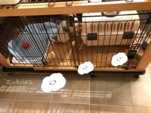 リッチェルの木製スライドペットサークル