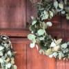 秋の剪定の後は、大きなリースづくり!ポポラスとグニーで。